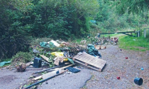 Fly-tipping and litter